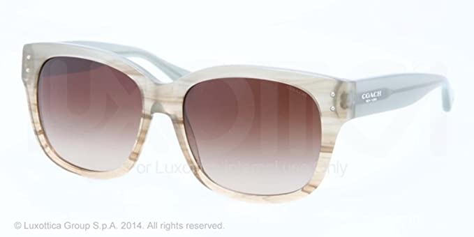 1979d2c636 COACH HC 8086 Sunglasses 518413 Sea foam Horn 56-16-135  Amazon.co.uk   Clothing