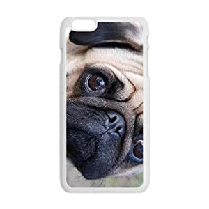 Curious Dog Hot Seller Stylish Hard Case For Iphone 6 Plus