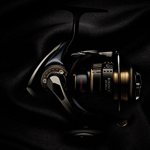 Daiwa EXIST2510PE-H Spinning Fishing Reel, 8-12 lb, Black