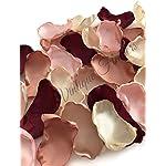 Maroon-blush-pink-ivory-champagne-and-rose-quartz-100-flower-petals-wedding-decor-bridal-shower-decor-baby-shower-decor-flower-girl-petals