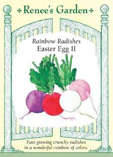 Radishes - Easter Egg II Seeds