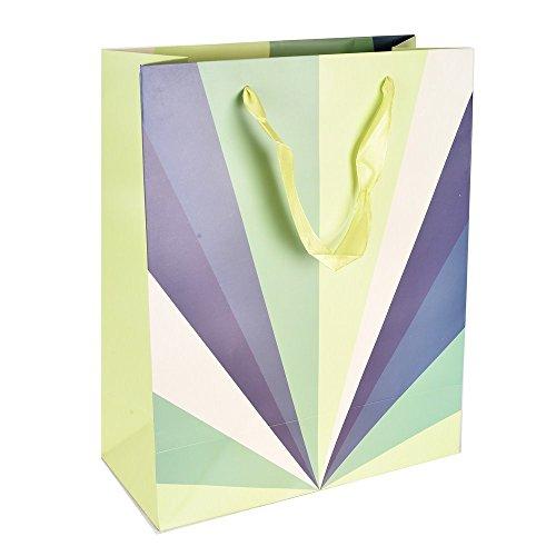 Enwraps Layer Ray Medium – Multi Paper Bags Combo of 4