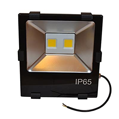 Zesol 150w LED Flood Light Outdoor Lighting Waterproof Ip65 for Garden Light (Cool White)