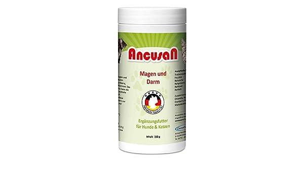 ancusan - Gato y estómago para Perros y Gatos: Amazon.es ...