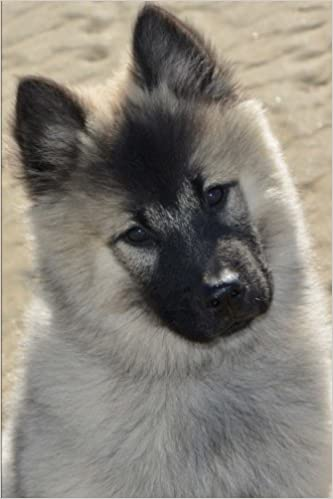 Como Descargar De Elitetorrent Curious Eurasier Pup Dog Journal: 150 Page Lined Notebook/diary Todo Epub