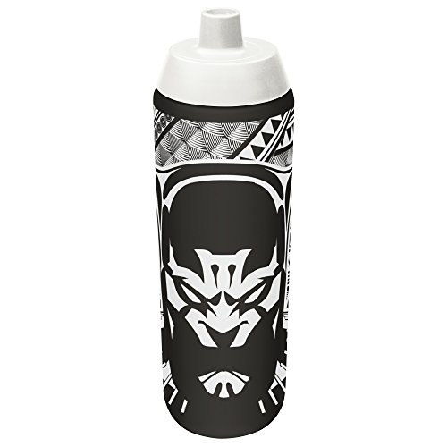 Zak Designs AVAC-S910 Marvel Comics Black Panther 24 Ounce Reusable Water Bottle, Multicolored