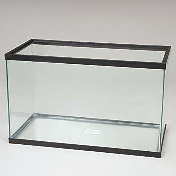 Aquarium Tank, Glass, 5-1/2 Gal