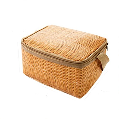Rakkiss Lunch Bag, Portable Insulated Thermal Cooler Lunch Box Tote Storage Bag Picnic Container (Khaki) (Bags Miu Miu Designer)