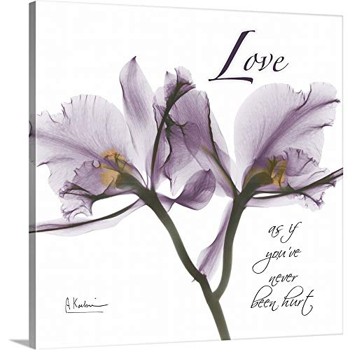 "Albert Koetsier Premium Thick-Wrap Canvas Wall Art Print Entitled Orchid Love x-ray Photography 12""x12"""