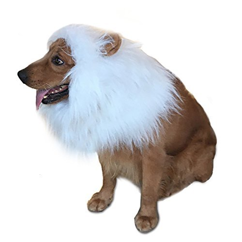 Costumes Black And White (GABOSS Lion Mane Costume for Dog, Dog Lion Wig for Dog Large Pet Festival Party Fancy Hair Dog Clothes (White with ear))