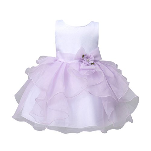 Zheng (Purple Belle Costumes)