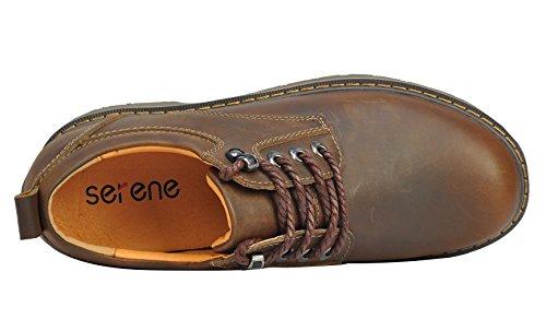 Serene Heren Cashion Ronde Neus Veter Lederen Enkellaarsjes Oxfords Outdoor Schoenen (11,5 B (m) Us, Bruin)