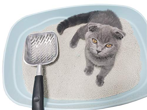 LALPCQXS Cat Litter Scoop, Aluminum Alloy Litter Shovel with Long Handle and Deep Shovel, 0.2 inch Small Holes with Plastic Coated Handle, Pets Nail Clippers with Safety Guard, Black