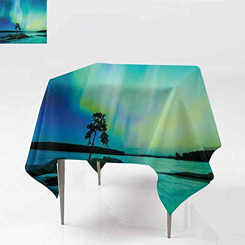 Jbgzzm Aurora Borealis Square Tablecloth Single Tree Over Rocky Stone by River Borealis Earth Beauty Image Table Decoration W36 xL36 Teal Blue Lime Green