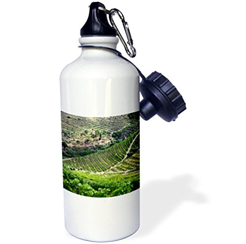 3dRose Portugal, Pinhao. The Vineyards of The Douro Valley. -Sports Water Bottle, 21oz (wb_188689_1), 21 oz, ()