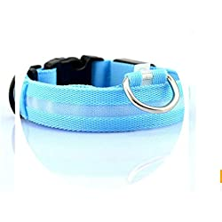 Krystal_Magic Nylon LED Pet Dog Collar,Night Safety Flashing Glow in The Dark Dog Leash,Dogs Luminous Fluorescent Collars Pet Supplies,Collar-Blue,S