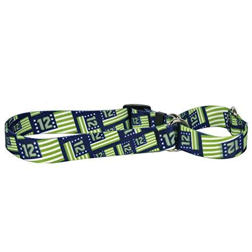 Yellow Dog Design Martingale Slip Collar, Flags