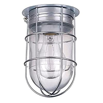 Light Ceiling Flush Mount LED Bulb Wall Barn Exterior with Cage Outdoor Cage Lighting Exterior