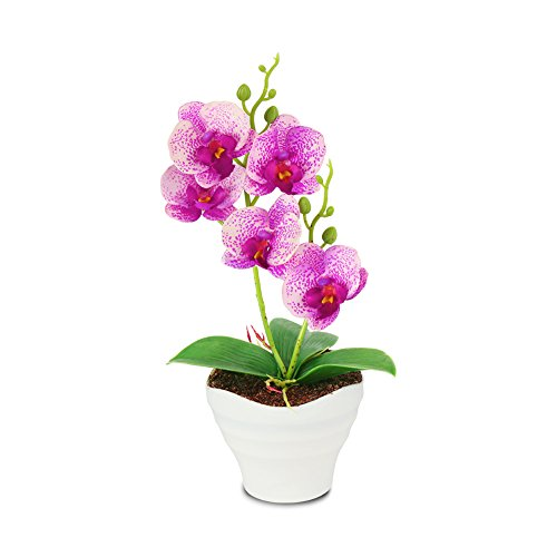 The Bloom Times Artificial Flowers Fake Plants Silk Plastic Artificial Simulation Butterfly Orchids (Red)