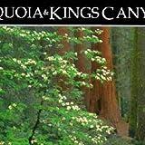 Sequoia/Kings Canyon (National Park, CA) (Postcard Books)