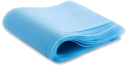 Bruder Hygienic Disposable Sheets