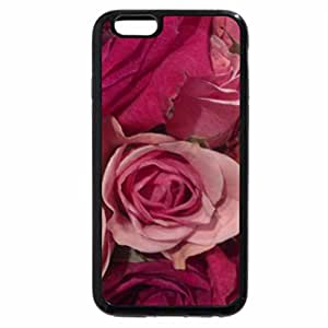 iPhone 6S / iPhone 6 Case (Black) Red & Pink Roses