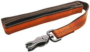 Coastal Pet Products DCP36906COG K9 Explorer 1-Inch Leash for Dogs, 6-Feet, Orange