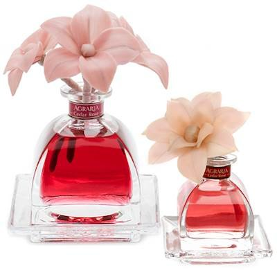 CEDAR ROSE Agraria Flower Diffuser Combo - AirEssence and PetiteEssence