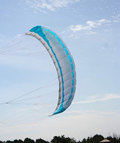 WANGCHAOLI Kite Large 3.5 Square Meters Quad line Power Kite parafoil Kitesurfing with Control bar Albatross Kite Factory