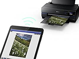 Epson SC-P800 - Impresora de Tinta (2880 x 1440 dpi, 220-240 V, 50/60 Hz, A2, Papel fotográfico, Papel Normal, Rodillo, USB), Ya Disponible en Amazon ...