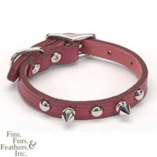 Coastal Pet Products DCP01703K10RED Leather Circle T Oak Tanned Embellished and Spiked Dog Collar, 10 by 3/8-Inch, Red