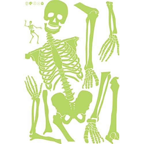 Exteren 60x90cm Luminous Skeleton Skeleton Halloween Haunted House Bar Corner Tidy Decorative Luminous Wall Sticker for Living Room Kitchen Bathrooms Bedroom etc (Multicolor) -