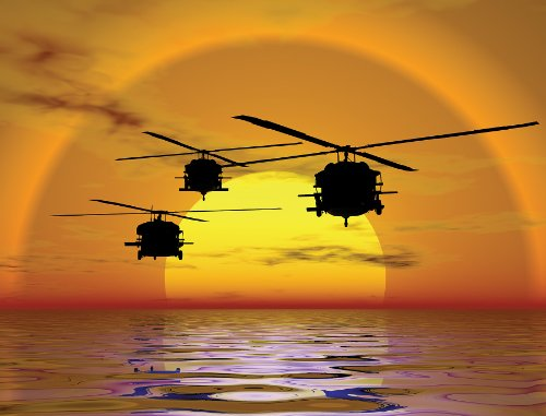Brewster Phoenix 99456 Pre-Pasted Non-Woven Mural Helicopter Sunset, 8-Foot x 10.5-Foot