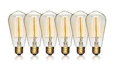 Edison Light Bulbs, LightLady Studio - 6 Pk - 60 Watt - Incandescent Squirrel Cage, E26 Regular Base Dimmable, Vintage, Antique for Pendant Lights, Chandeliers, Wall Sconces, Industrial Lighting