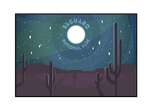 Saguaro National Park, Arizona - Desert Scene at Night (36x24 Framed Gallery Wrapped Stretched Canvas)