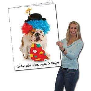 Amazoncom 2x3 Happy Birthday Funny Clown Dog Giant Greeting