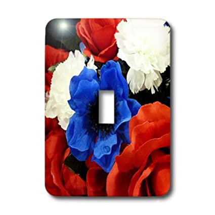 3dRose lsp/_17725/_1Floral Patriotic Single Toggle Switch