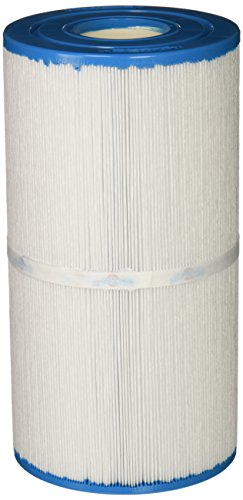 (Filbur FC-2970 Antimicrobial Replacement Filter Cartridge for Select Pool and Spa)