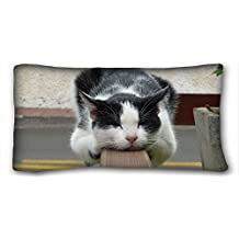 Custom ( Animals cat lying downs sleeping cute spotted ) Pillowcase Cushion Cover Design Standard Size 20x36 inches One Sides suitable for Twin-bed PC-Red-16448