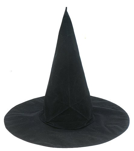 (Jacobson Hat Company Flocked Plastic Witch Hat)