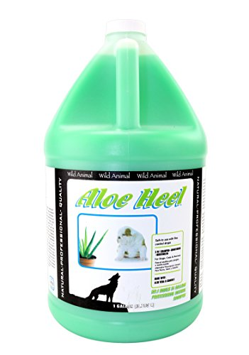 Wild Animal Aloe Heel 50:1 Shampoo, Gallon ()