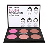 1pc City Color Glow Pro Blush Palette Matte Collection #C0012A (Matte)