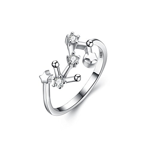 BriLove Women 925 Sterling Silver CZ Statement Ring -''Leo'' Horoscope Zodiac 12 Constellation Astrology Adjustable Ring by BriLove