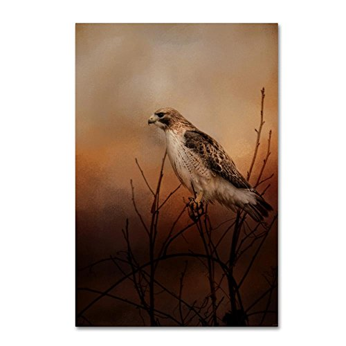 (Red Tail In Wait by Jai Johnson, 16x24-Inch Canvas Wall Art)