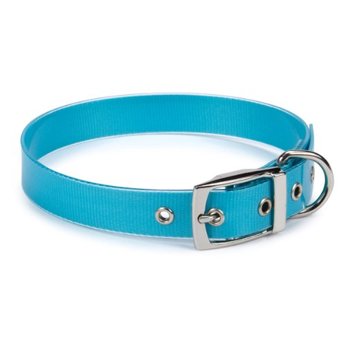 Guardian Gear PVC/Polyester Waterproof Dog Collar, 11-14-Inch, Bluebird, My Pet Supplies
