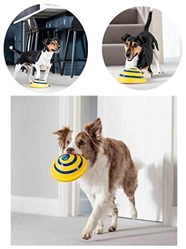 (Flying ring Dog Toy,summer outdoor trackshot toss dog Toy,indoor Tug ring pet toy,cat squeak Chew bite toy,Sounding Disc Woof Glider toy,Training sport toy for large medium small dogs (6.29inch))