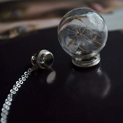 Dandelion Make a Wish Real Flower Openable Screw Cap Cylinder Glass Ball Pendant 925 Sterling Silver Chain Necklace - Cylinders Chain