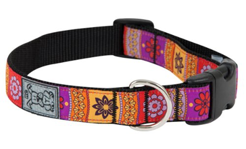 RC Pet Products 1-Inch Adjustable Clip Collar, Medium, Trendy Mehndi