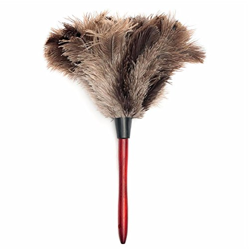 20cm Anti Static Natural Ostrich Fur Feather Duster Brush Wood Handle - Oakley Lens Removal