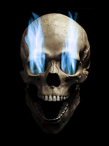 (Blue Flaming Skull Wall - Sticker Graphic - Auto, Wall, Laptop, Cell, Truck Sticker for Windows, Cars, Trucks)